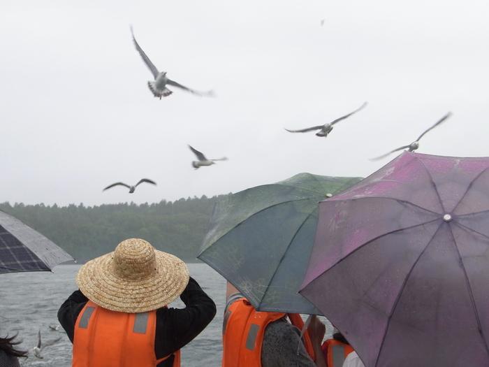 羅先(北朝鮮)で見かけた中国人観光客たち_b0235153_1622298.jpg