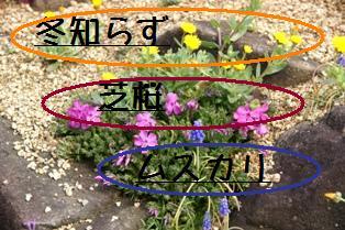 f0203094_1472081.jpg