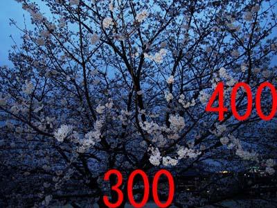 d0032222_1953896.jpg