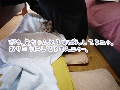 a0158724_22313275.jpg