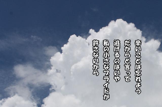 d0033665_4371047.jpg