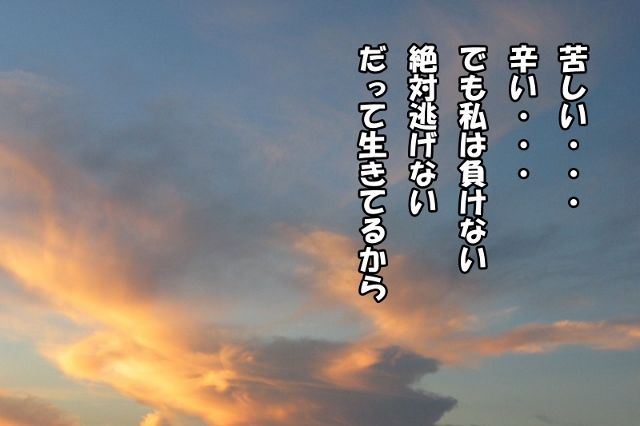 d0033665_4374181.jpg