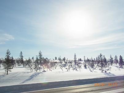 Finland イナリ村再び_e0195766_726910.jpg