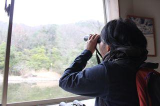 鳥見から天ぷらへ。_e0149587_17243670.jpg