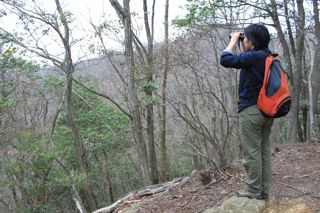 鳥見から天ぷらへ。_e0149587_1725174.jpg
