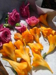 良い匂いね。_f0116297_10571417.jpg