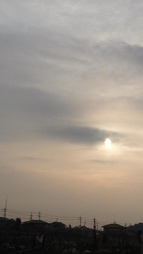 犬と歩いた朝 #5_f0155808_8114247.jpg