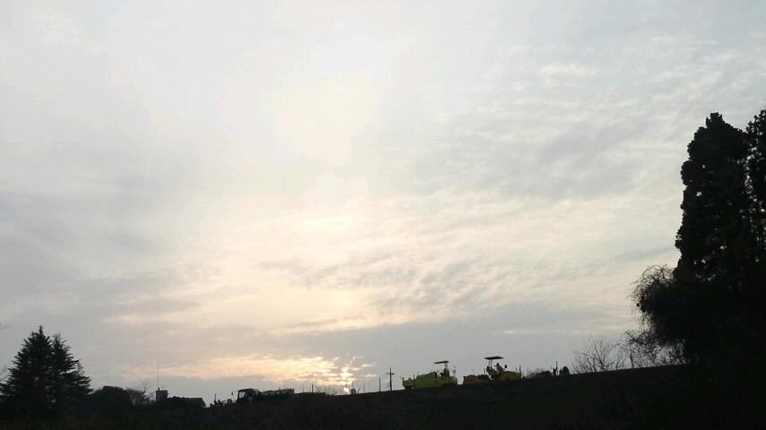 犬と歩いた朝 #3_f0155808_87434.jpg