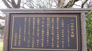 一心行の大桜 ~南阿蘇村~_b0228113_9183857.jpg