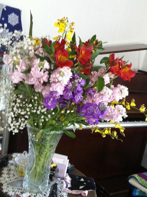 きれいな花には毒がある_c0185356_19431263.jpg