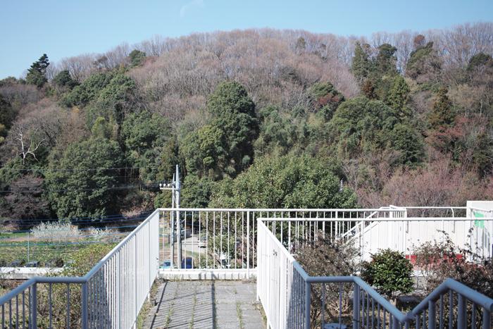 通院最終日_c0182775_20411515.jpg