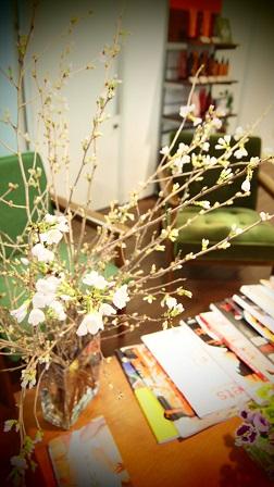 今週のお花_f0202682_16441968.jpg