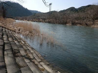 川の水が_b0219993_15461940.jpg