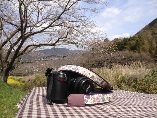 桜の木の下で_c0093301_1721546.jpg