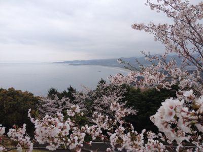 宮崎の景色_a0300410_185233.jpg