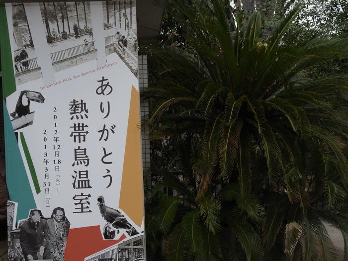 井の頭公園 熱帯鳥温室_e0276411_22465513.jpg