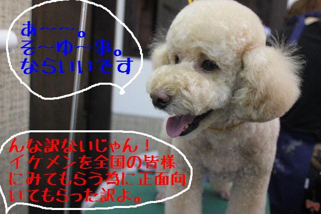 b0130018_0514428.jpg