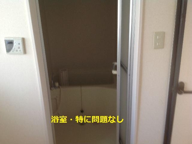 f0031037_2027039.jpg