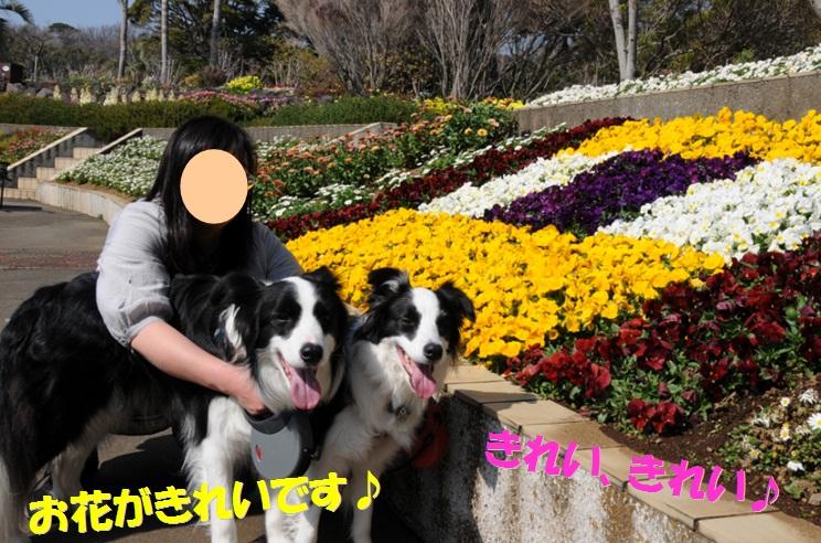 c0147241_18321272.jpg