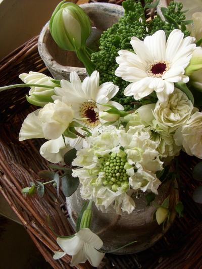 白い花。。。_a0229658_17192896.jpg