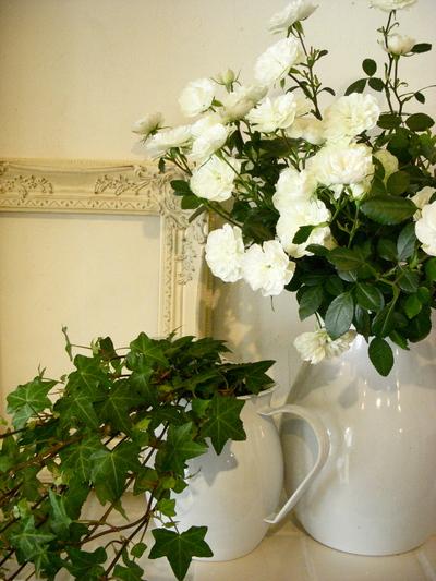 白い花。。。_a0229658_17384347.jpg