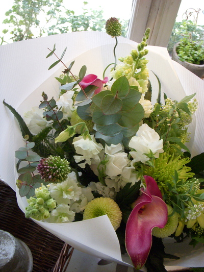 白い花。。。_a0229658_17405094.jpg