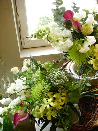 白い花。。。_a0229658_17442352.jpg