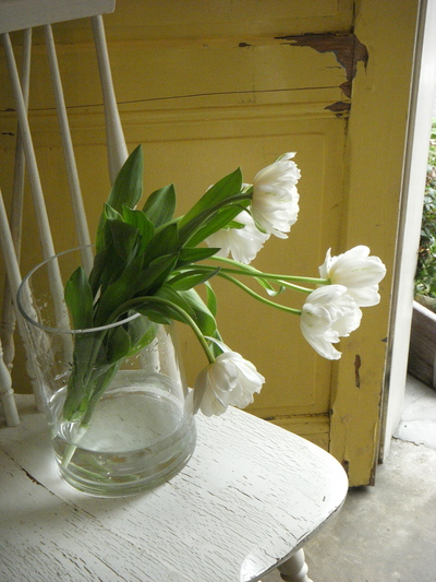 白い花。。。_a0229658_17461395.jpg