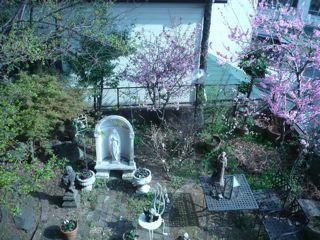 桃色の庭_c0203401_1525649.jpg