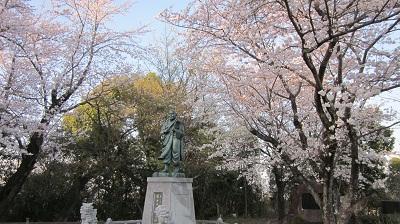 ❀❀~花岡山の桜~2013年3月❀❀_b0228113_11461799.jpg