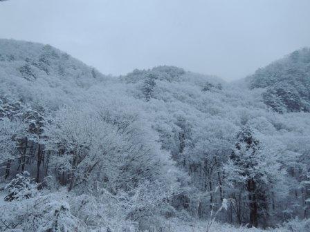 雪の日のサイクリング(2)_b0206037_9105562.jpg