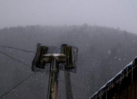 雪の日のサイクリング(2)_b0206037_911472.jpg