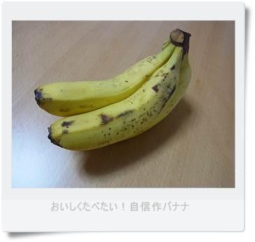 b0066848_0114085.jpg
