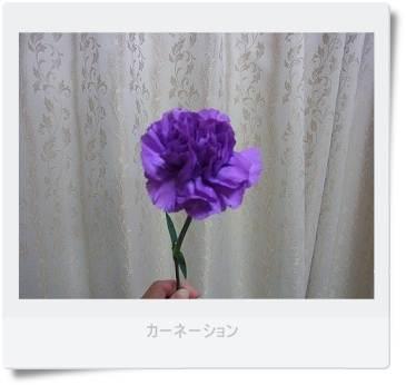 b0066848_0295472.jpg