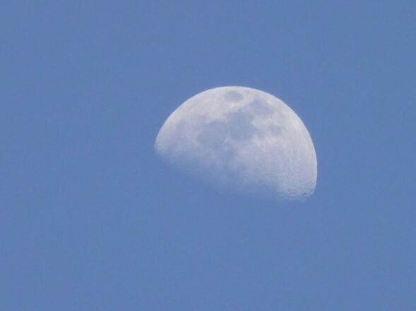 d0282264_1243134.jpg