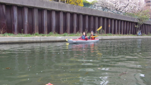 川辺から河津桜_c0249569_1014163.jpg
