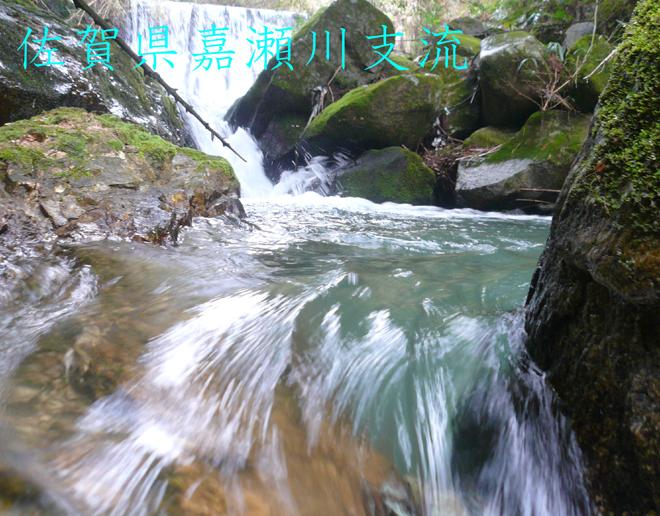 f0183484_061144.jpg