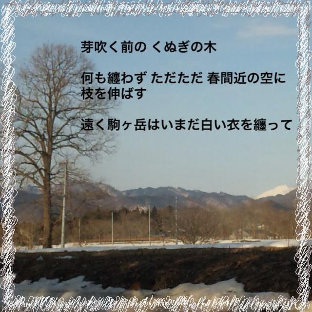 d0194506_1825051.jpg