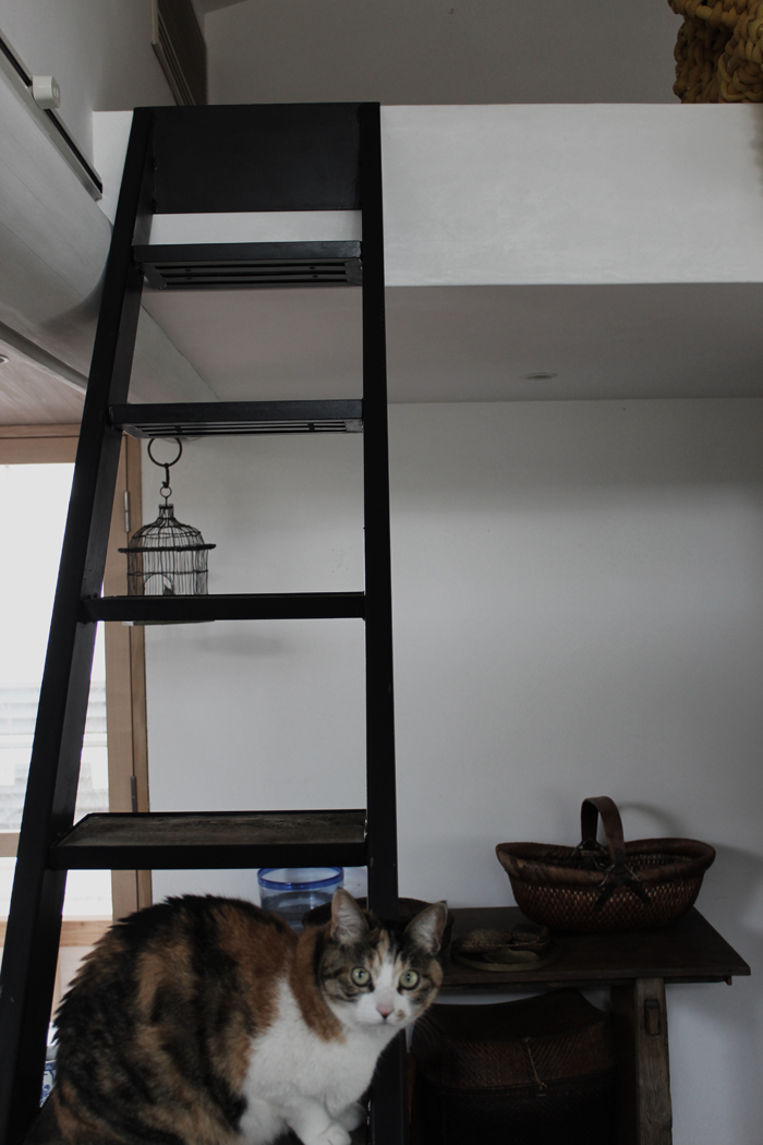 『 Iron  stairs』製作施工!_f0192906_22363717.jpg