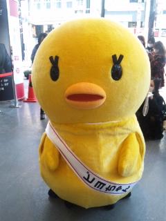 ピヨちゃん、渋谷マルイに降臨!_e0057018_23233825.jpg