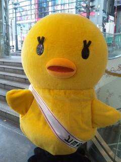 ピヨちゃん、渋谷マルイに降臨!_e0057018_23233861.jpg