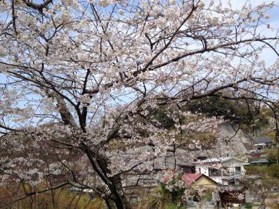 古都鎌倉❷_a0279635_19434779.jpg