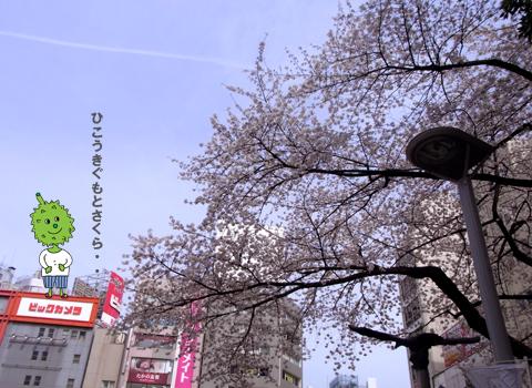 3/23青空個展@池袋ありがとうございました!_d0156336_17253820.jpg