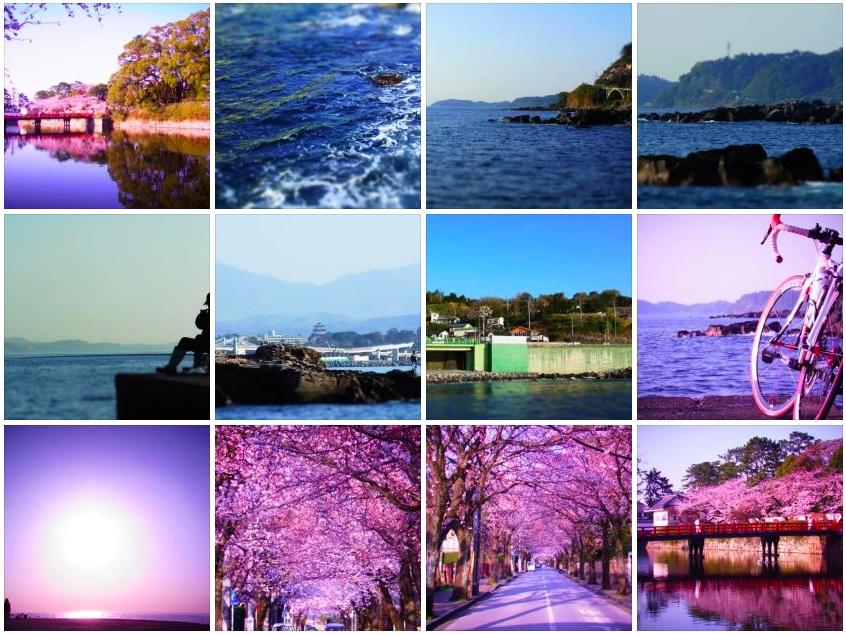 春の色。_c0067646_5232116.jpg