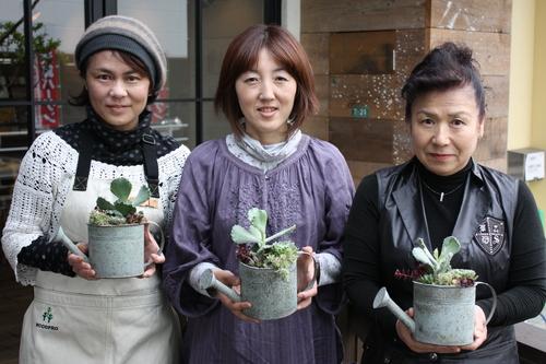 寄せ植えで楽しむ多肉植物_d0237564_1057833.jpg