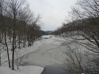 雪へ_d0122374_1751441.jpg