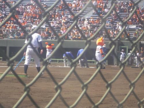 プロ野球オープン戦の観戦に行ってきました!_e0191174_14202414.jpg