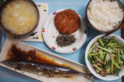 【秋刀魚】 春だけど_b0000480_16341892.jpg