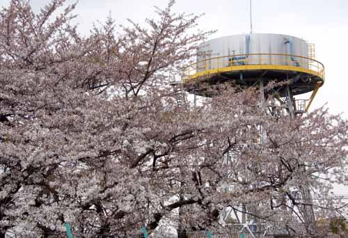 春の給水塔_f0173596_11492420.jpg