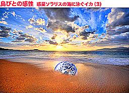 d0263813_7243921.jpg